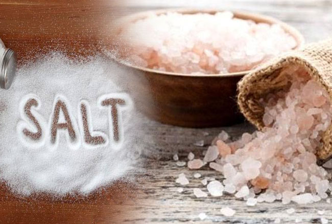 PunjabKesari Connection of Vastuand Salt