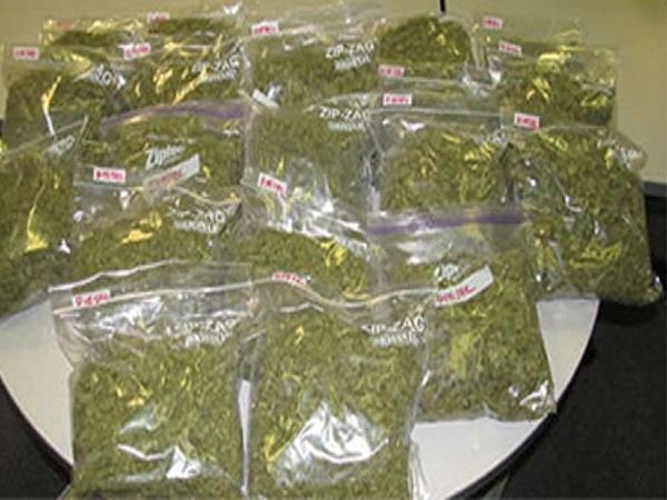 PunjabKesari, Madhya Pradesh, Neemuch, Drug smuggling, Narcotics wing, Neemuch police, Rajasthan Police jawan