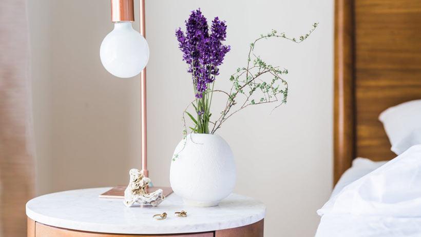 PunjabKesari, nari, lavender plant in bedroom Image,  lavender plant Image