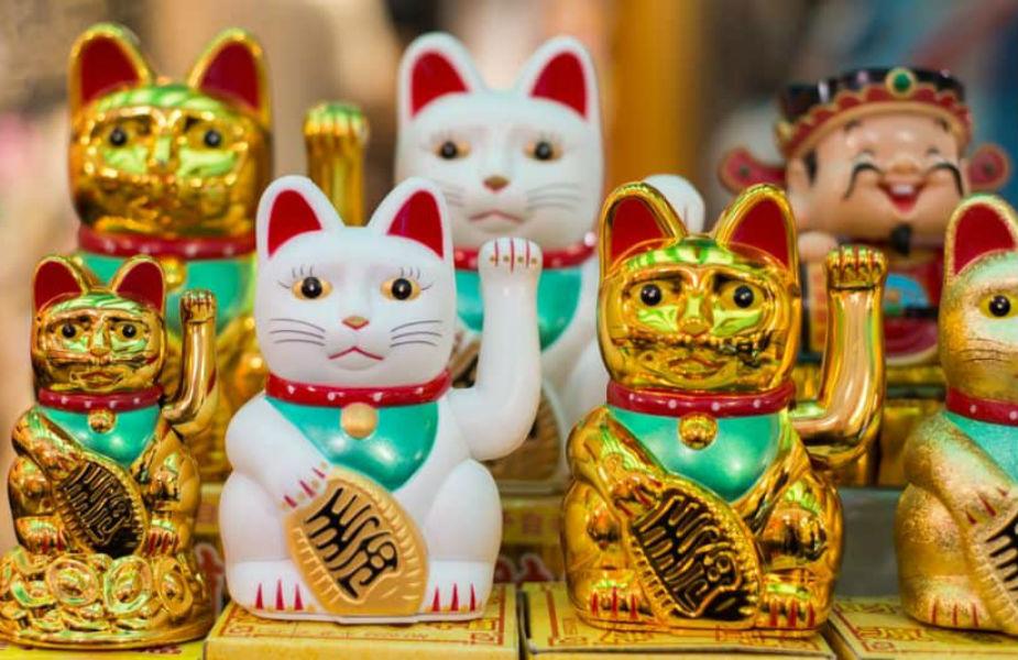 PunjabKesari, Luck Cat, Fengshui Cat, Fengshui  Lucky Cat, लकी कैट