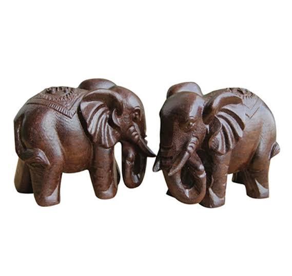 PunjabKesari, Feng Shui elephant