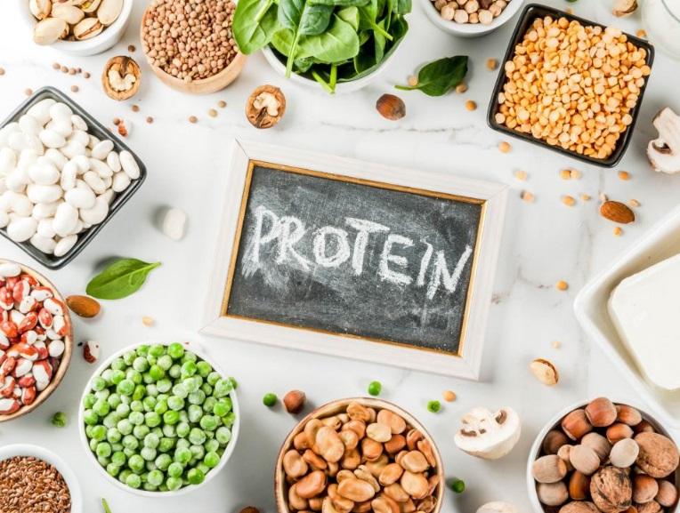 PunjabKesari, Protein image