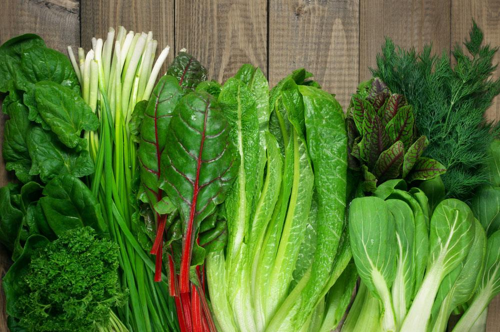 PunjabKesari, green vegetables image