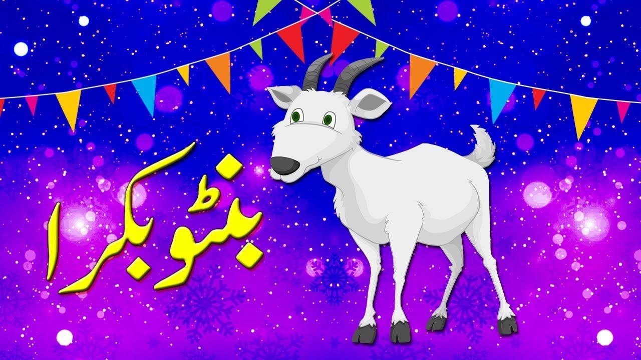 PunjabKesari, Bakrid Eid 2020, Bakrid Eid, Eid al Adha, Eid al Adha 2020, Islam, Islamic festival, Festivals Importance, Importance of bakrid eid in hindi, Punjab Kesari