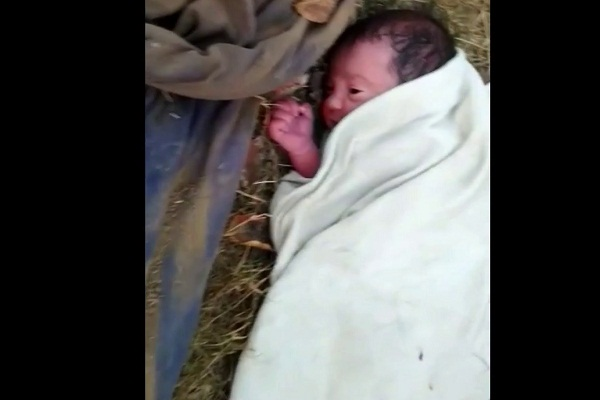 PunjabKesari, newborn