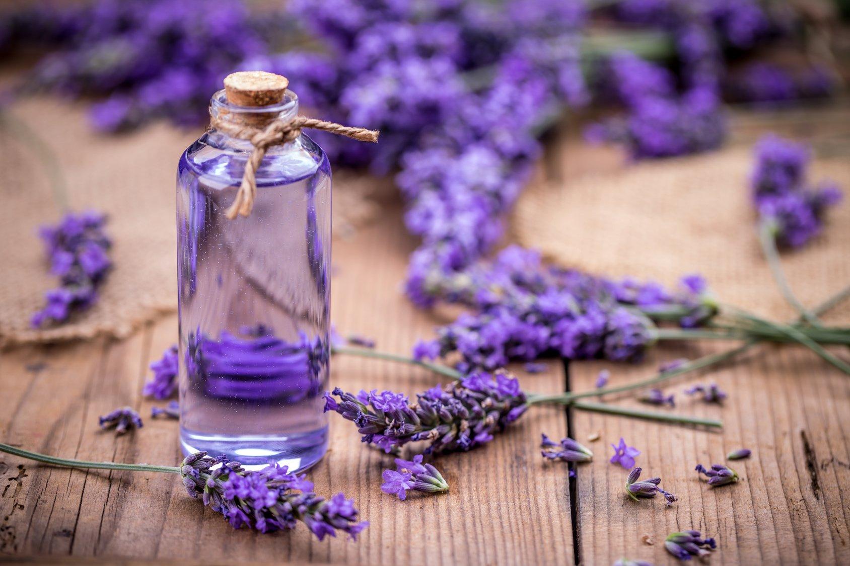 PunjabKesari, Lavender Oil Image