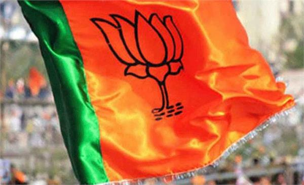 bjp released list of star campaigners of baroda by election