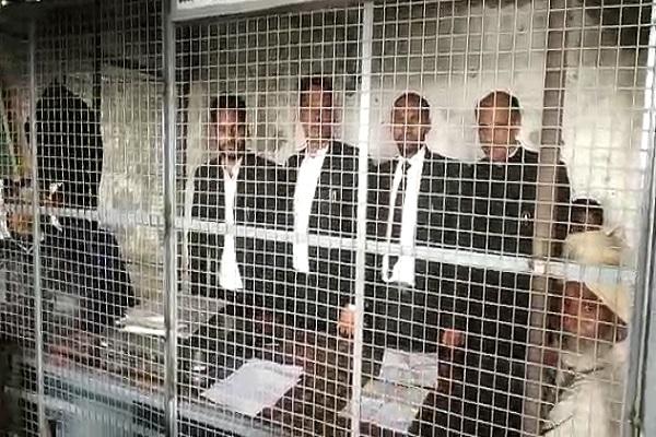 PunjabKesari, Monkey, Terror, Lawyer, Wounded, Court
