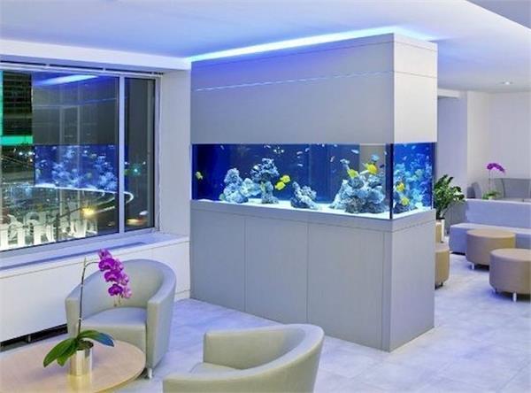 रूम डिवाइडर हो या डैकोरेशन, Double Side Aquariums का करें यूज
