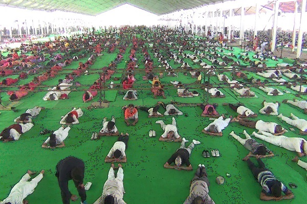PunjabKesari, yoga, day, Security