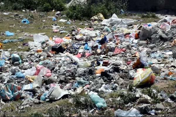 PunjabKesari, Waste Image