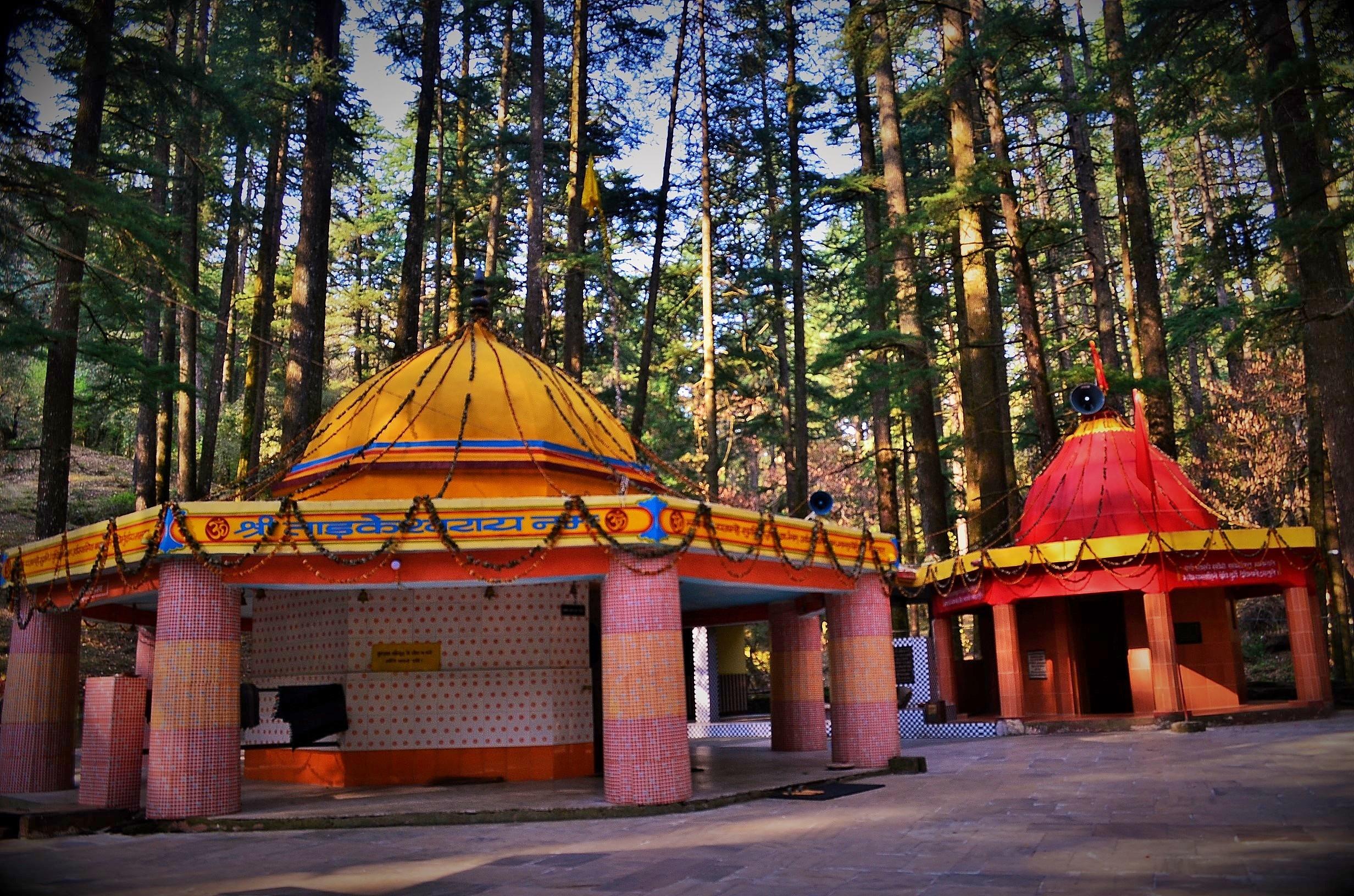 PunjabKesari, Tadkeshwar Temple in Uttarakhand, Tadkeshwar Temple, Uttarakhand Tadkeshwar Temple, lord Shiva, Tadkasur, Kartikeya, ताड़केश्वर मंदिर, उत्तराखंड ताड़केश्वर मंदिर, Devi Lakshmi, Dhanteras 2020, Dharmik Sthal, Religious Place in india, Hindu teerth Sthal