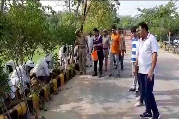 PunjabKesari, District, Administration, green, jail