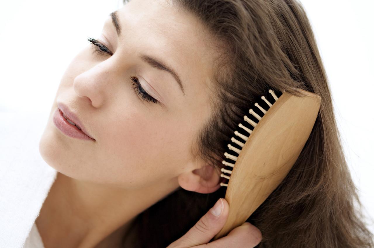 PunjabKesari, hair brush, Beauty