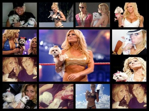 Wrestler Torrie Wilson, emotional over pet dog's death, said this