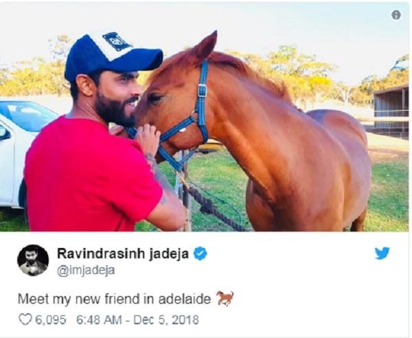 PunjabKesari sports Ravinder jadeja