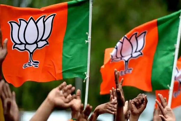 PunjabKesari, Madhya Pardesh ,Bhopal Hindi News ,BJP News ,Alok Sanjar ,Counterattack ,Kamalnath ,Congress ,भोपाल न्यूज,बीजेपी,आलोक संजर,पलटवार,कमलनाथ,कांग्रेस