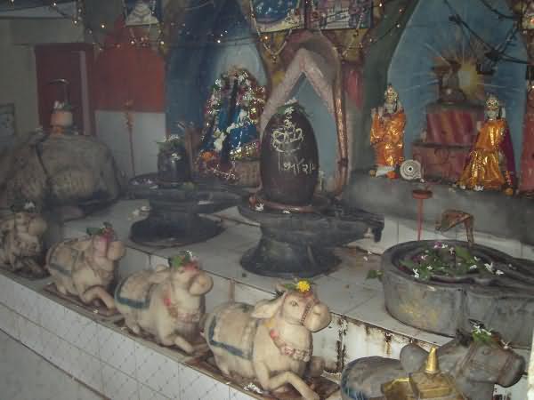 PunjabKesari, Lord Shiva, Shivji, Pipaleshwar Mahadev, Dharmik Sthal,