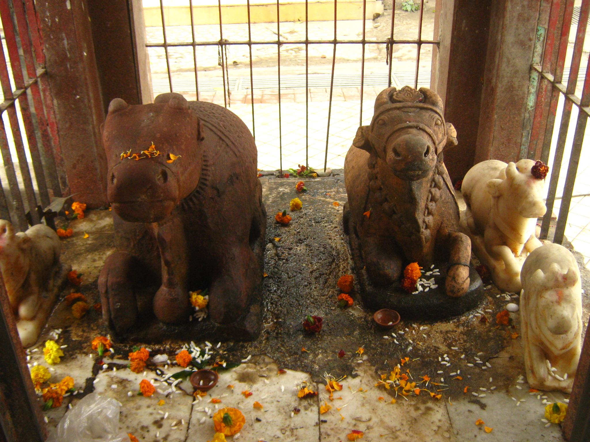 PunjabKesari, Parshurameshwar Pura Mahadev Temple, Parshuram Jayanti, Dharmik Sthal