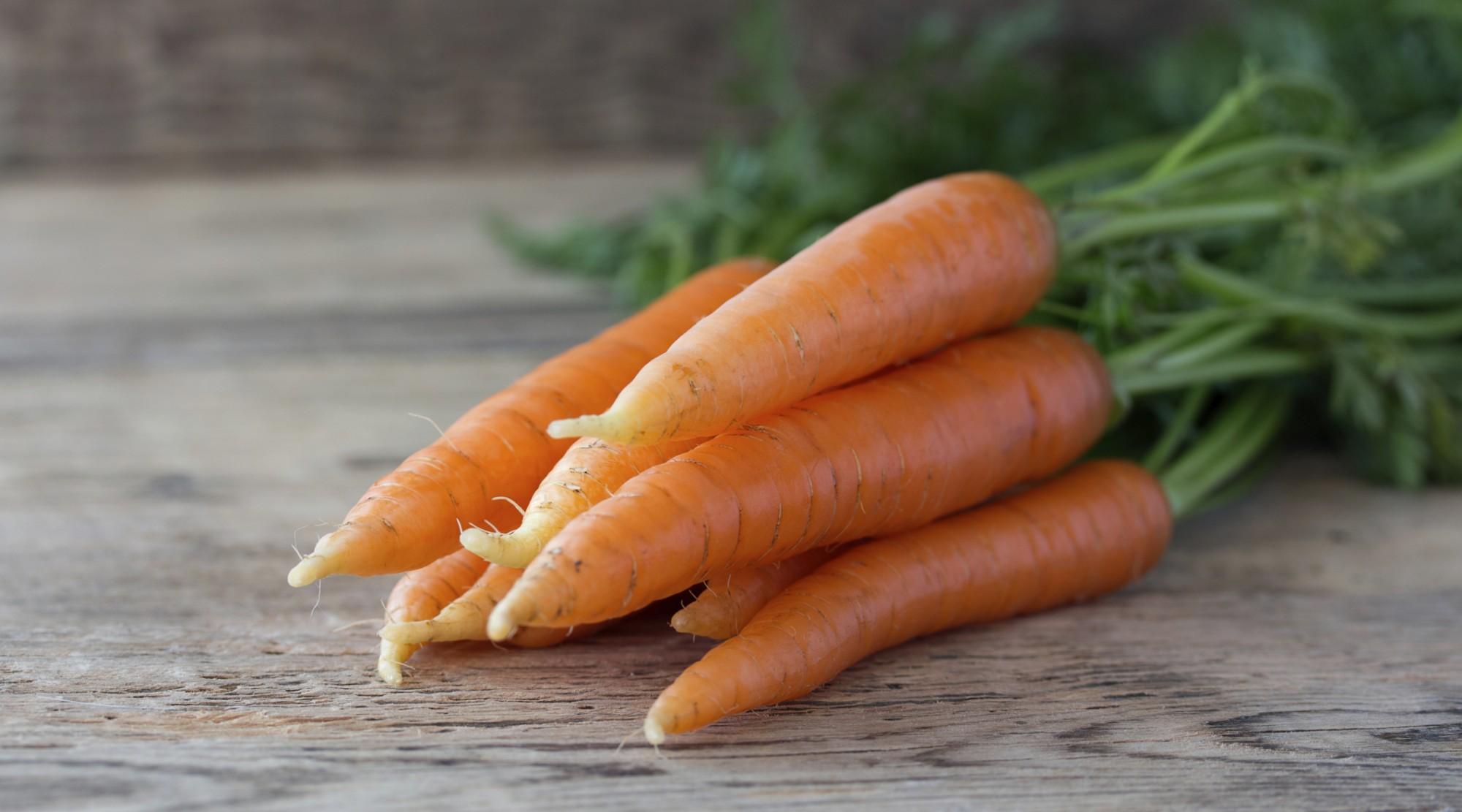 PunjabKesari, Carrot