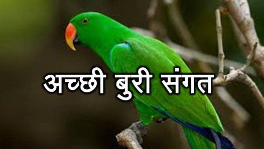 PunjabKesari, Motivational Concept, Motivational Theme, Inspirational Concept, Niti Gyan, Niti Shastra in hindi, Niti in Hindi, Success mantra In Hindi, Dharmik Katha in Hindi, Religious Story In hindi