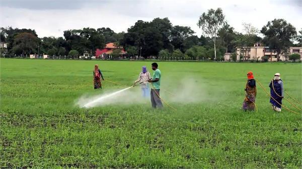 rabi crops down 3 41 percent from last year