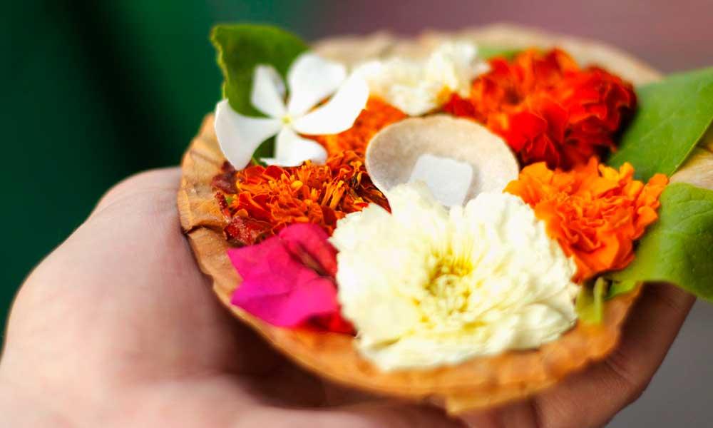 PunjabKesari, kundli tv, flower image