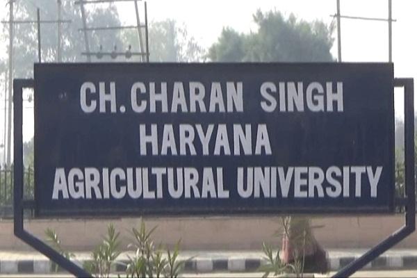 PunjabKesari, Ch charan singh agriculture university haryana
