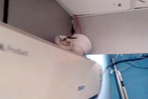 PunjabKesari, CCTV Image