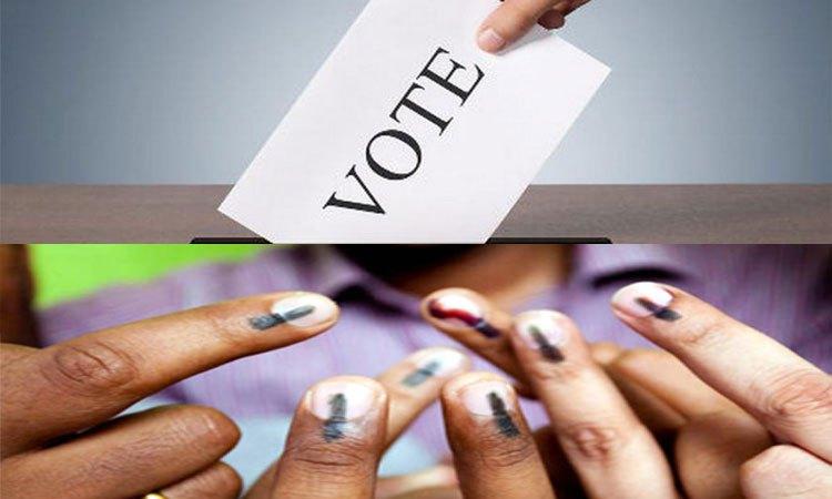 PunjabKesari, चुनाव, Elecetion