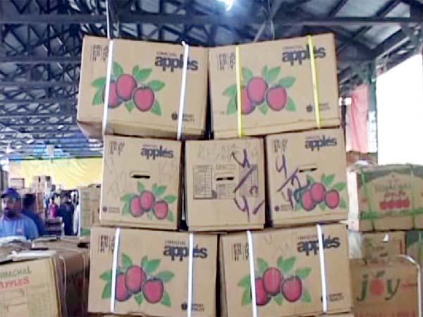 PunjabKesari, Apple Box Image
