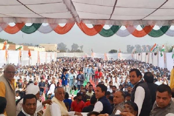 PunjabKesari, randeep surjewala