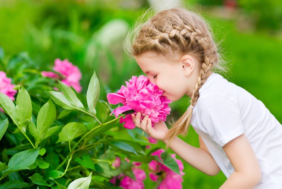 PunjabKesari, Girl smells flower, Fragrance, सुगंध