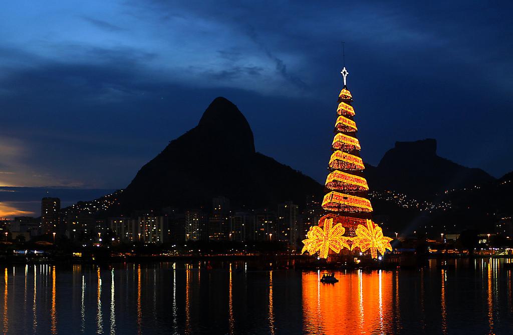 PunjabKesari, Christmas tree