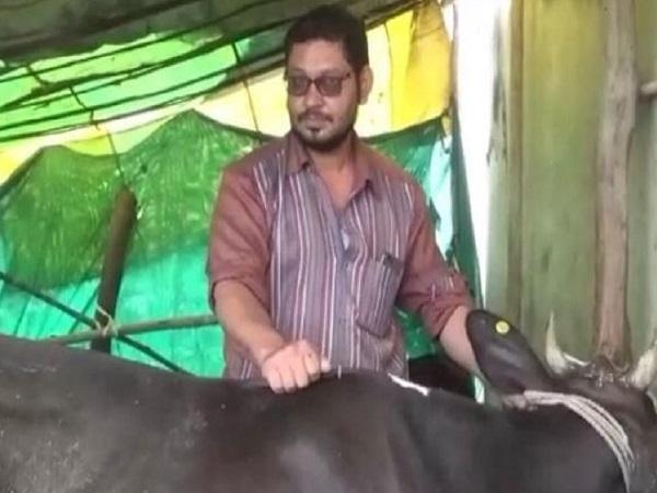 PunjabKesari, Madhya Pradesh News, Punjab Kesari, Seoni, Muslim pariwar, gauseva, Blind Cow, jyarat Naka