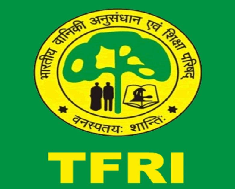 PunjabKesari, Madhya Pardesh Hindi News,Jabalpur Hindi News,Jabalpur Hindi Samachar,Spider Interpretation Center Arecanarium, TFRI