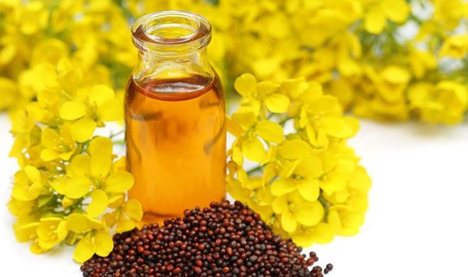 PunjabKesari, mustard