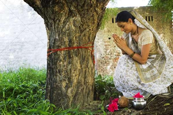 PunjabKesari, Jyotish upay of Peepal Tree, Peepal Tree, पीपल पेड़