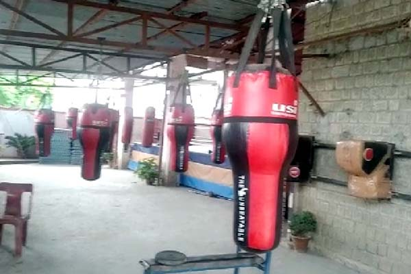 PunjabKesari, Boxing Court Image