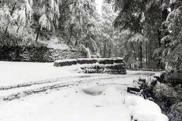 PunjabKesari, Snowfall Image
