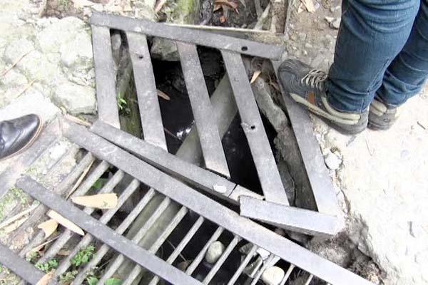 PunjabKesari, Iron Net Image