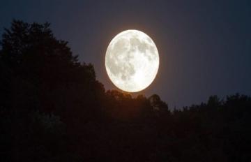 PunjabKesari, चंद्रमा, Chanderma
