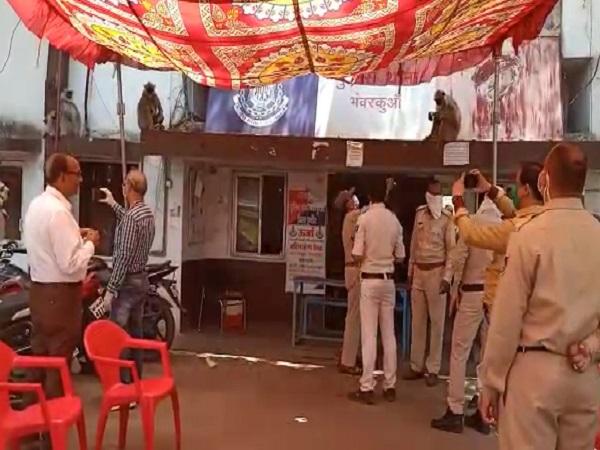PunjabKesari, Madhya Pradesh, Indore, Wildlife, Lockdown, Corona, Police