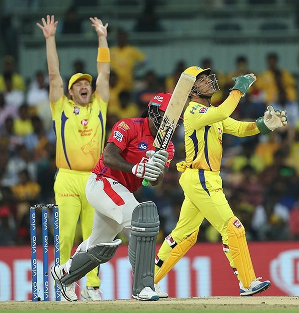 Chris gayle again victim of harbhajan singh google