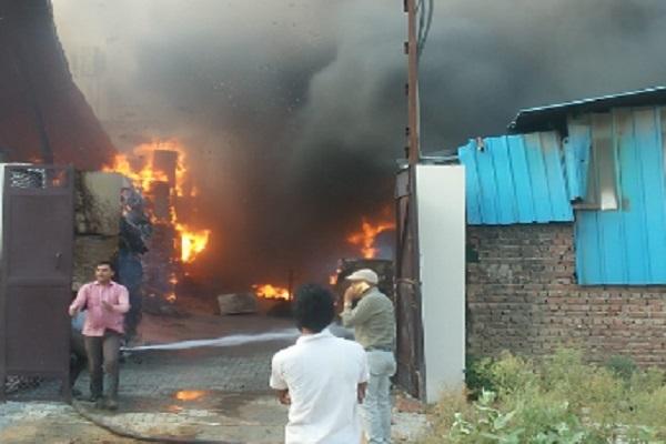 PunjabKesari, Fire, cardboard, laborer