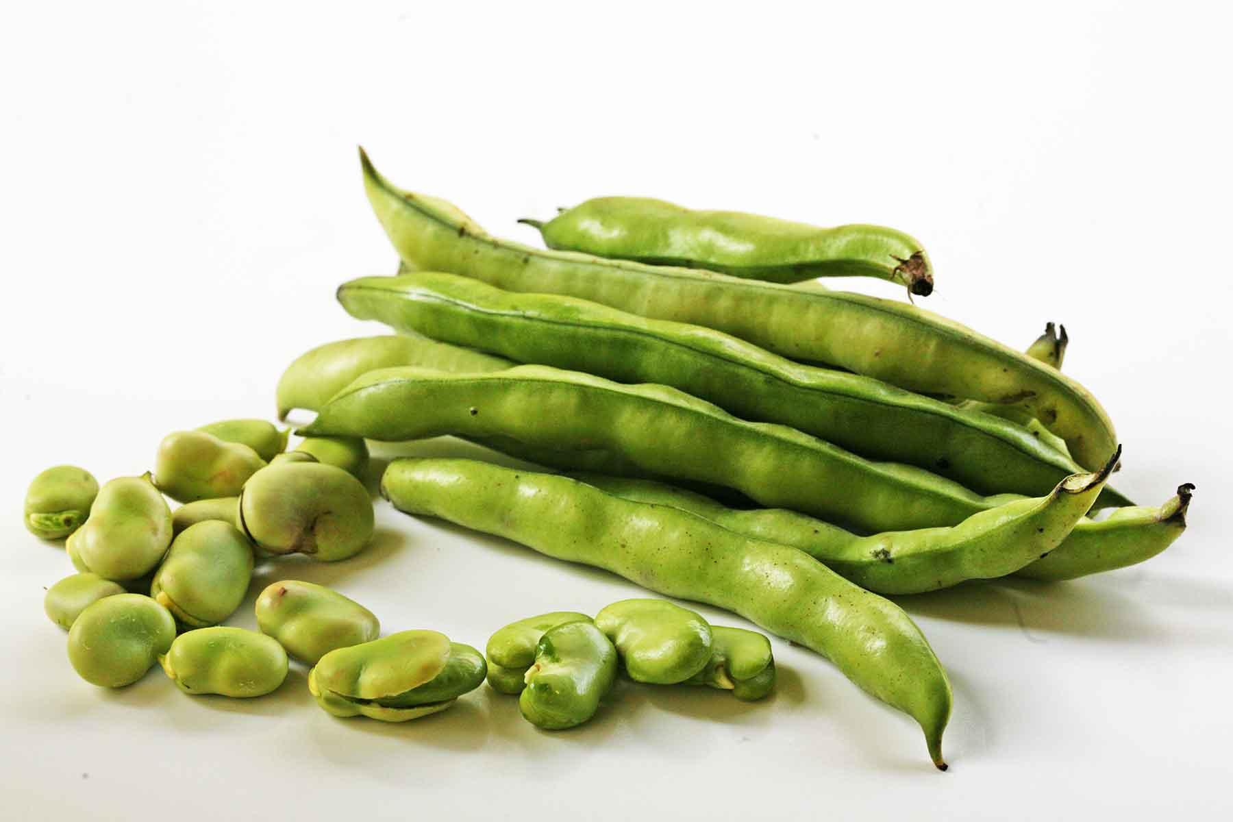 PunjabKesari, fava beans