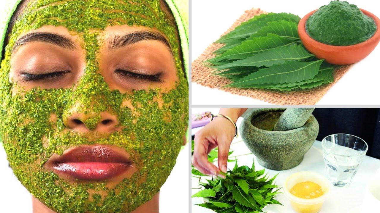 PunjabKesari, neem Beauty Tips