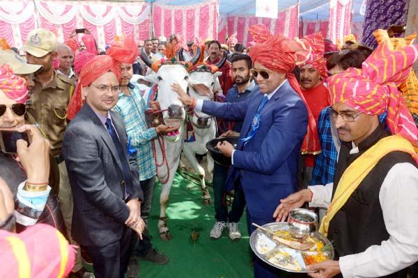 PunjabKesari, Nalwari Fair Image