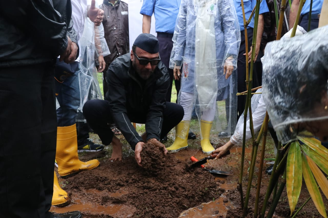 Bollywood Tadka, ajol, ajay devgan, jackie shroff, plantation, bollywood, heavy rain, rain plantation