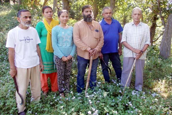 PunjabKesari, Family in Forest Image